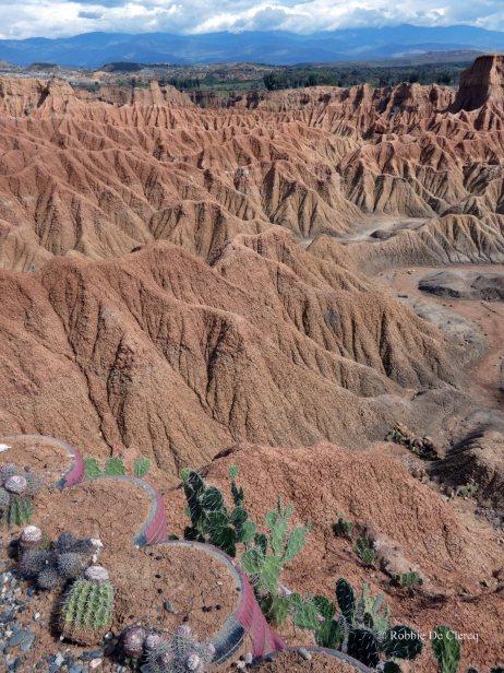 Tatacoa desert (9)