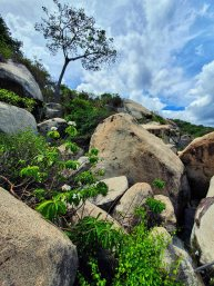 Tayrona National Park (16)