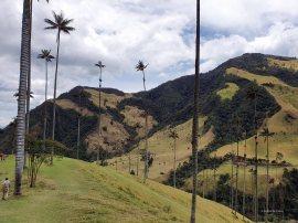 Valle de Cocoras (6)