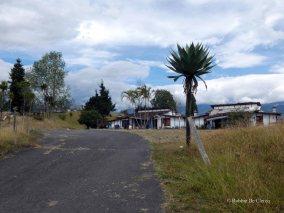 Villa Carlos Lehder (4)